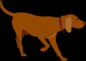 HuntingDog