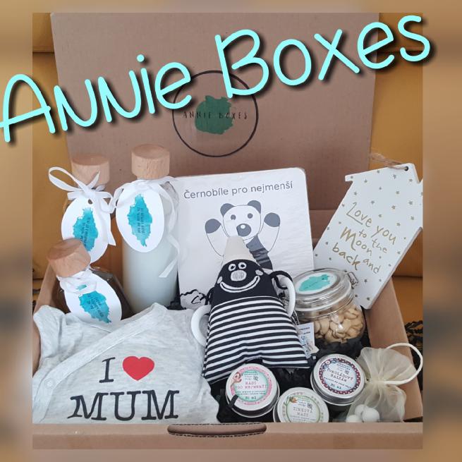 Annie Boxes main